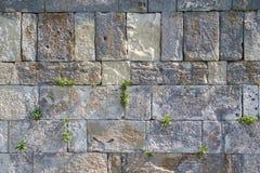 De muur Stock Afbeeldingen