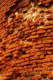 De muur Stock Fotografie