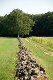 De muur die van de rots aan verre boom loopt Stock Foto's