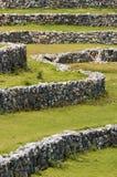 De muur en het gras van de steen Royalty-vrije Stock Fotografie
