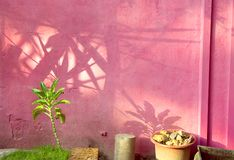 De muur van de adobe Stock Fotografie