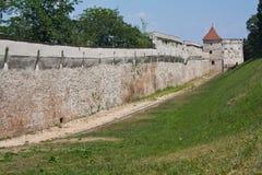 De muur van de defensie met toren Stock Afbeeldingen