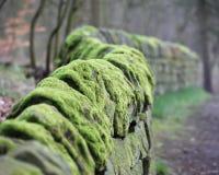 De Muur van de droge Steen Stock Afbeeldingen