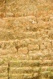 De muur van de grond Stock Afbeeldingen