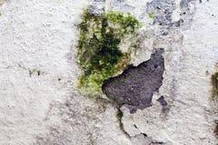 De Muur van de Grungesteen Royalty-vrije Stock Foto's