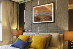 De muur van de slaapkamer, de schilderijen, de hoofdkussens en de gordijnen Royalty-vrije Stock Fotografie