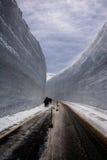 De muur van de sneeuw Royalty-vrije Stock Foto