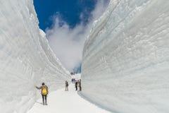 De muur van de sneeuw Royalty-vrije Stock Foto's
