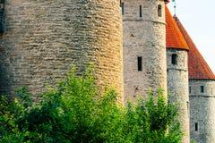 De Muur van de stad van Tallinn, Estland Stock Afbeelding