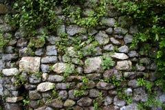 De Muur van de tuin in Ninfa, dichtbij Rome Royalty-vrije Stock Afbeeldingen