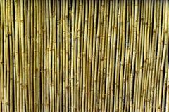 De Muur van het bamboe royalty-vrije stock foto