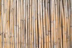 De muur van het bamboe Stock Foto