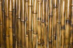 De muur van het bamboe als achtergrond stock afbeeldingen