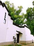 De muur van het huis Royalty-vrije Stock Fotografie