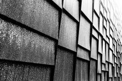 De muur van het plaatmetaal buiten de detailhandel van Patagonië, Vancouver Stock Foto