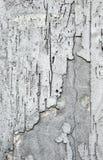 De Muur van het pleister Stock Afbeelding