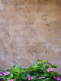 De muurachtergrond van het cement Stock Afbeelding