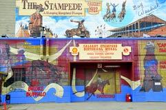 De muurschildering van de Stormloop van Calgary Stock Afbeelding
