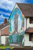 De muurschilderingen van Belfast Stock Afbeelding