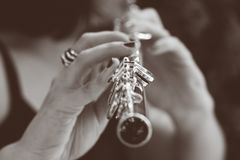 De muziek is de adem van het geluid van het leven royalty-vrije stock fotografie