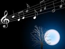De muziek van de nacht. Royalty-vrije Stock Fotografie