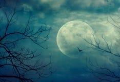 De muziek van de nacht vector illustratie