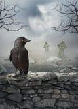 De mystieke achtergrond van Halloween met raaf op de steenmuur Stock Foto's