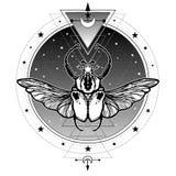 De mystieke Kolos van het symboolinsect Heilige Meetkunde vector illustratie
