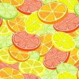 De Naadloze Achtergrond van de citrusvrucht stock foto