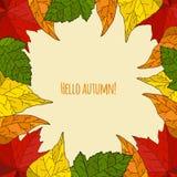 De naadloze achtergrond van de herfst Stock Afbeeldingen
