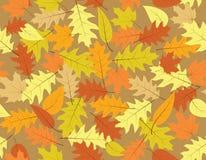 De naadloze achtergrond van de herfst - dalingskleuren Stock Afbeeldingen