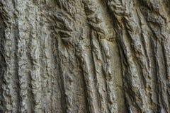 De naadloze achtergrond van de rotstextuur Royalty-vrije Stock Fotografie