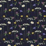 De naadloze bloemen van de patroonmidzomer royalty-vrije illustratie