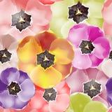 De naadloze bloemen van patroontulpen Vector, EPS 10 stock illustratie