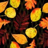 De naadloze bloemenbladeren van de patroonherfst Stock Afbeeldingen