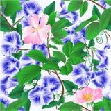 De naadloze de glorie blauwe lente van de textuurochtend bloeit en uitstekende editable vectorillustratie van takjes de wilde roz stock illustratie