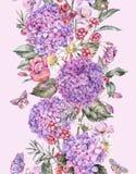 De Naadloze Grens van de waterverfzomer met Roze Hydrangea hortensia, Kamille, Bessen vector illustratie