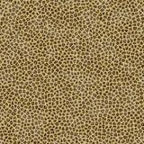 De naadloze Huid van de Jachtluipaard Royalty-vrije Stock Afbeeldingen