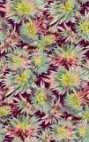 De naadloze kleurrijke achtergrond van de waterverfbloem royalty-vrije illustratie