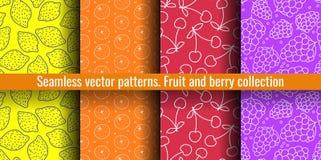 De naadloze Reeks van het Patroon Sappige fruit en besseninzameling Citroen, mandarin, kers, druif De hand getrokken achtergrond  vector illustratie