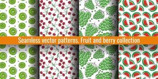 De naadloze Reeks van het Patroon Sappige fruit en besseninzameling Kiwi, kers, druif, watermeloen De hand getrokken achtergrond  royalty-vrije illustratie