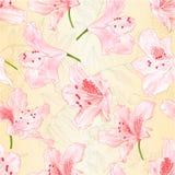 De naadloze rododendrons van textuur lichtrose bloesems op een aard uitstekende vector editable illustratie als achtergrond vector illustratie