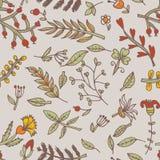 De naadloze textuur van de bloem Eindeloos bloemenpatroon Kan voor behang worden gebruikt Stock Foto's