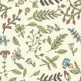 De naadloze textuur van de bloem Eindeloos bloemenpatroon Kan voor behang worden gebruikt Royalty-vrije Stock Fotografie