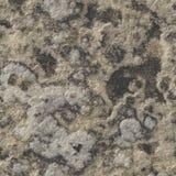 De naadloze textuur van de rots Stock Afbeeldingen