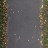 De naadloze Textuur van de Weg met Bladeren Stock Fotografie