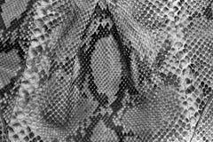De naadloze textuur van de slanghuid Manier voor tropische reptielen Echte Pythonhuid stock foto's