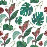 De naadloze tropische bladeren van de patroonwaterverf Stock Afbeeldingen