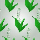 De naadloze vector van het textuurlelietje-van-dalen Royalty-vrije Stock Foto's