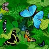 De naadloze vector Zuidamerikaanse tropische achtergrond van de regenwoudwildernis met vlinders Stock Fotografie